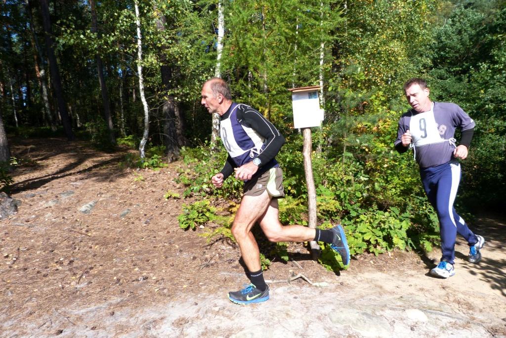 Lesní běh (253)